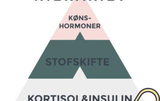 Pyramide i 3 lag med hormonernes balance
